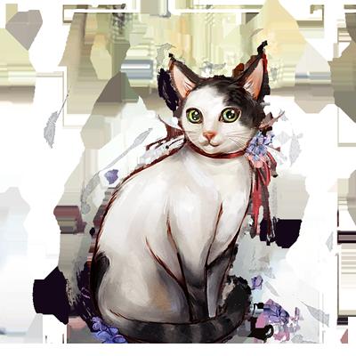 阿莉(閻丹生的貓).png